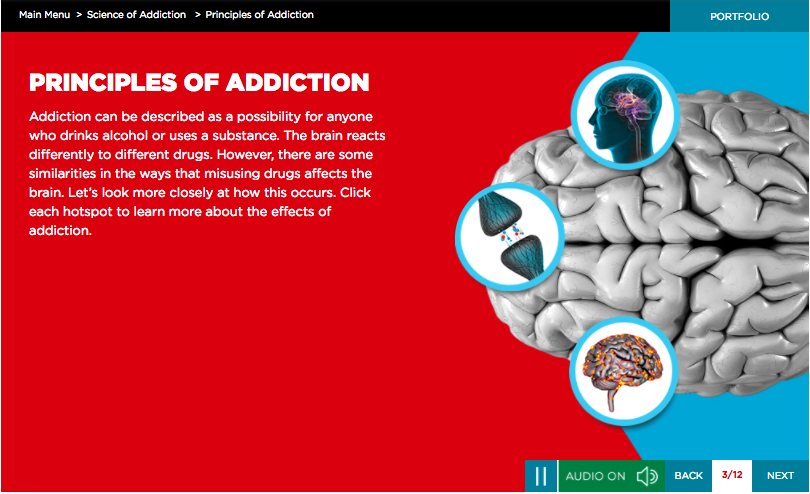 screenshot of community education course principles of addiction training section